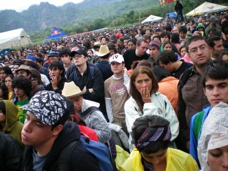 Festival colmena 2008